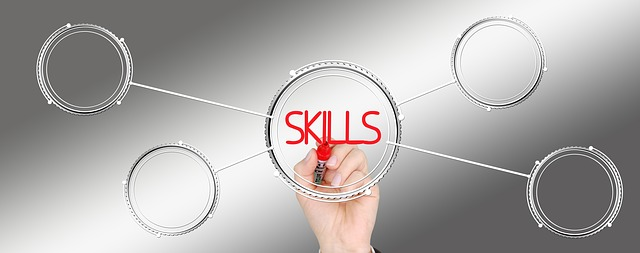 skills delle start-up evolute